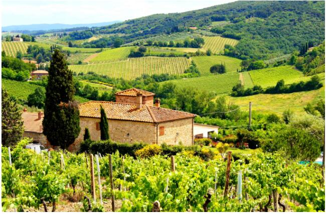 THE BEST OF TUSCANY