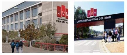 Study Abroad at University of Viña del Mar (3)