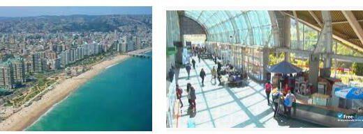 Study Abroad at University of Viña del Mar (5)