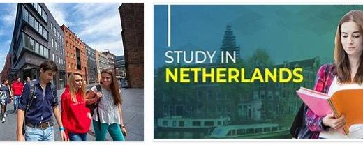 Study System in the Netherlands